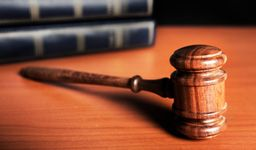 Litigation and Trial Work